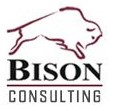 Welcome to Bison Consulting